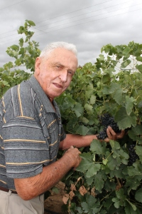 Leo Pech in his vineyard during harvest in 2012.