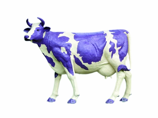 p44-purple-cow-lonely